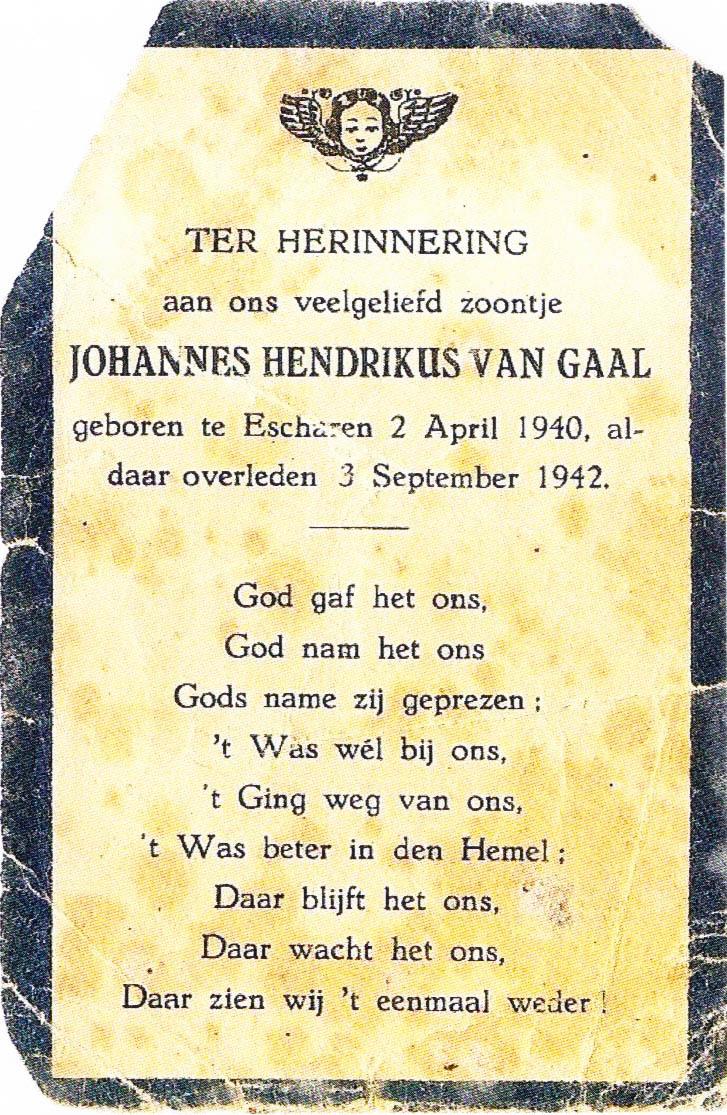 Bidprentje Johannes Hendrikusvan Gaal